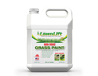 2 - 32 ounce bottles Lawn Paint