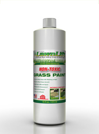 16 ounce bottle Lawn Paint